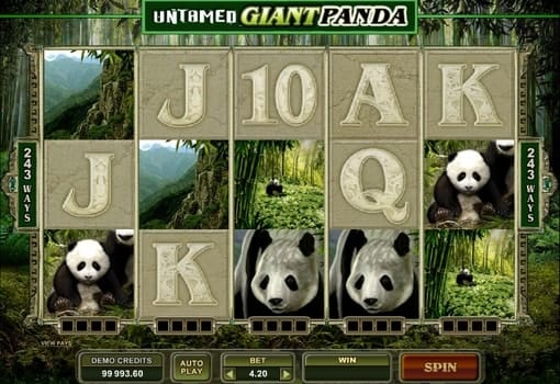 Игровые автоматы с выводом денег — Untamed Giant Panda